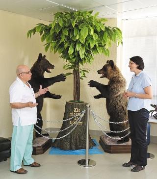 Экскурсия начинается с приемного покоя. Медведи — символ России
